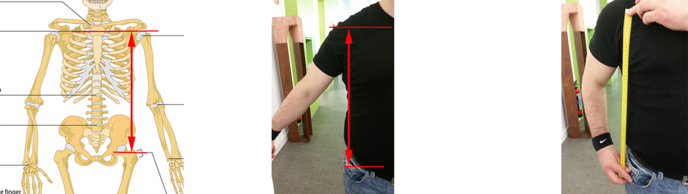 Explanation for Anthropometric Measurement